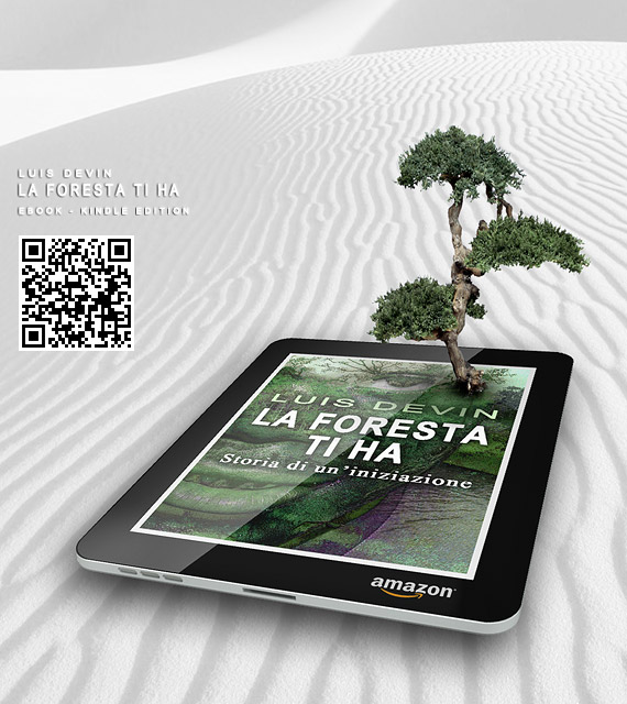 Kindle e-book