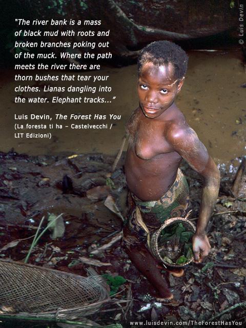 baka pygmies dam fishing photo gallery of the book quotthe